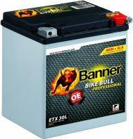 Banner Bike Bull AGM Professional 53001 - 26Ah