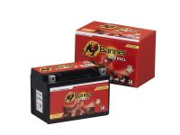 Banner Bike Bull Gel 51021 - 10Ah