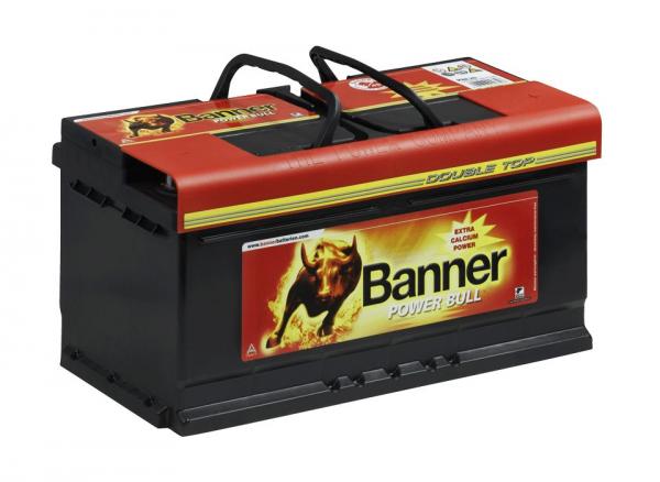 banner power bull professional p10040 100ah batteries. Black Bedroom Furniture Sets. Home Design Ideas