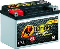 Banner Bike Bull AGM Professional 50901 - 8Ah
